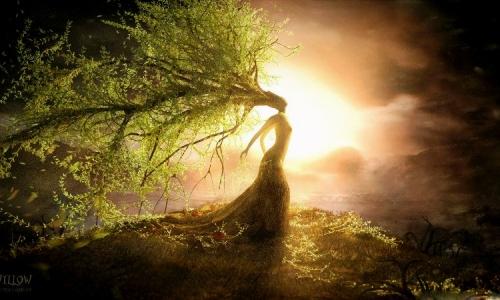 Ilustrasi puisi di senggigi matahari berakhir