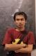 Rachman Habib